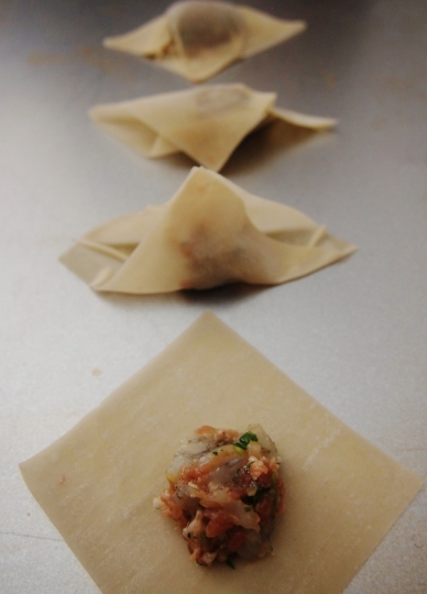 Wonton wrap progression