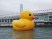 Hong Kong Harbour Rubber Duck